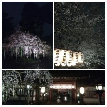 kingyo-kotori-2017-04-15T01_22_32-3.jpg